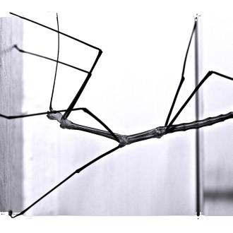 Rahmenhalter