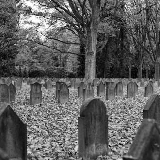 Silent Area – Victims of War